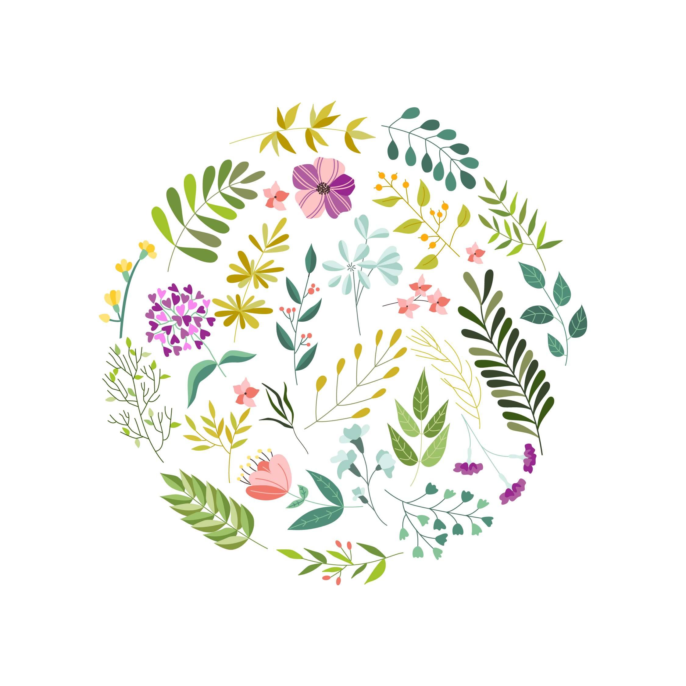 kwiaty, zioła
