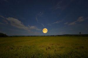 Zapamiętuj sny, idź za intuicją! Z pełnią Księżyca w Rybach uwolnisz się od złego