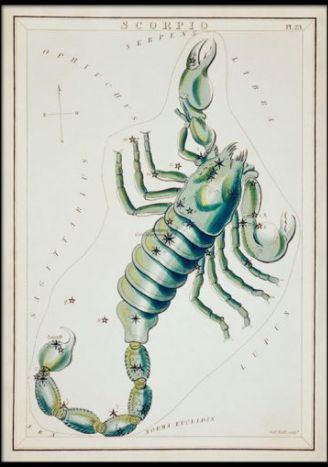 Plakat znaki zodiaku retro - Skorpion