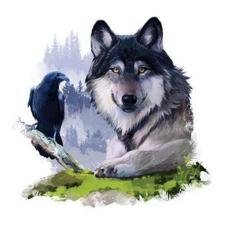 typ osobowości, sen, wilk