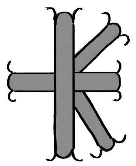 runa islandzka na pomoc w chorobie