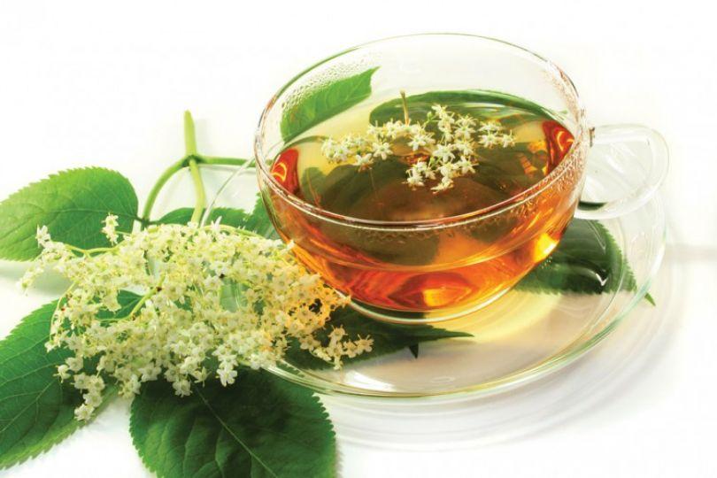 kwiaty, zdrowie, napar, przemiana materii, syrop, zielnik, grypa, czarny bez, odwar, angina