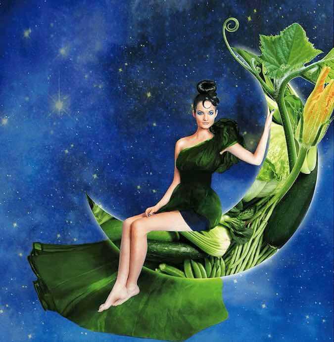 kobieta na księżycu z roślin