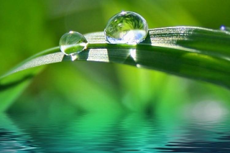 Magiczna woda
