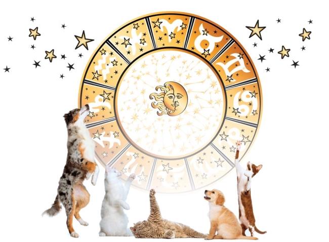 Zwierzęta i horoskop