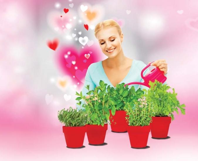Szukasz miłości? Sadź wiosenne zioła!