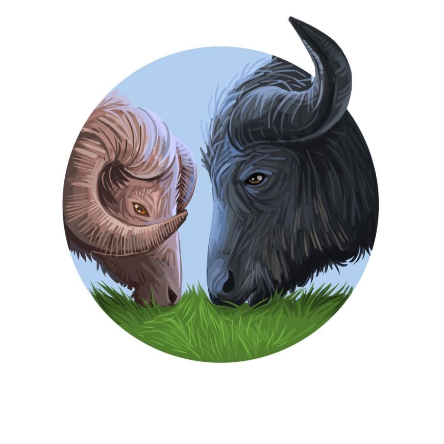 Ludzie urodzeni na przełomie znaków zodiaku łączą ich cechy charakteru