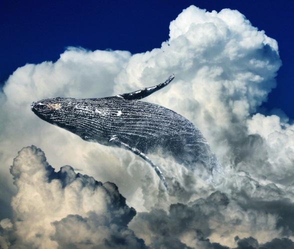 Spójrz w niebo, powróż sobie z chmur