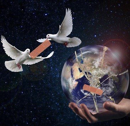 planeta ziemia, gołębie