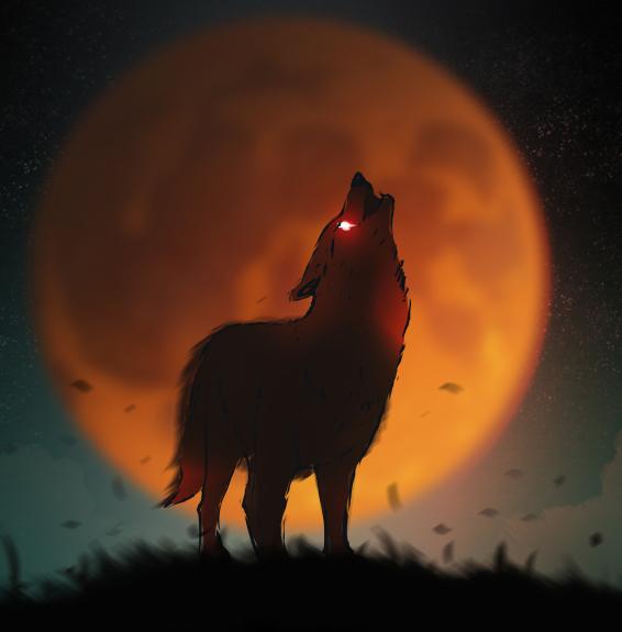 pełnia księżyca, wilk