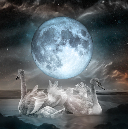 pełnia księżyca w rybach