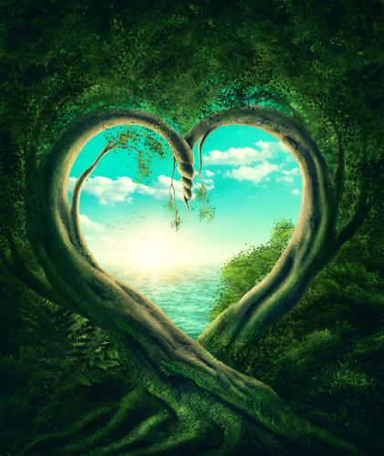 serce, zieleń, magia