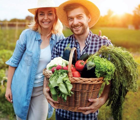 Poznaj zalety diety wysokowibracyjnej.