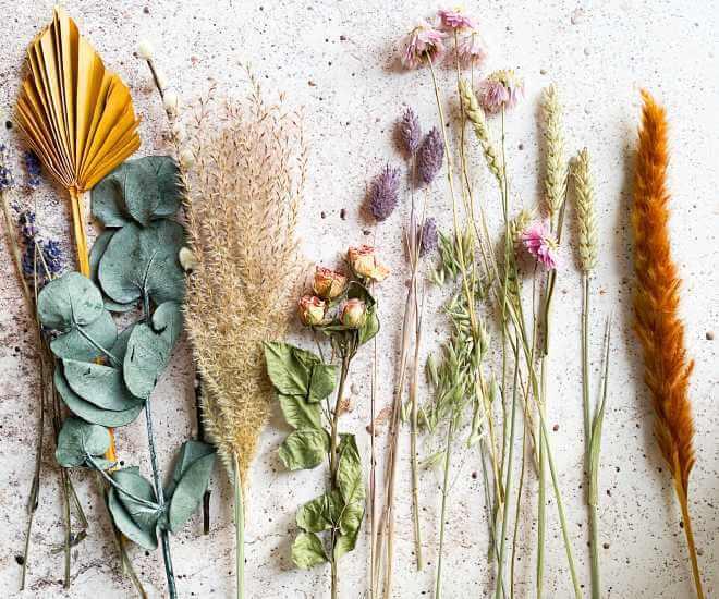 Te zioła wzmocnią energię Twojego znaku zodiaku. Zrób z nich woreczek mocy!
